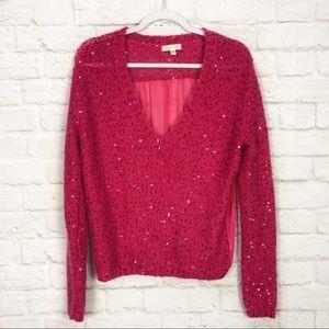 Silence + Noise Sequin Mohair Sheer VNeck Sweater